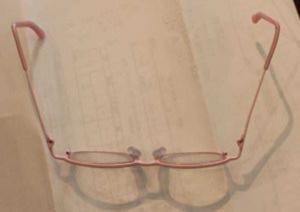 スルメになったメガネ枠